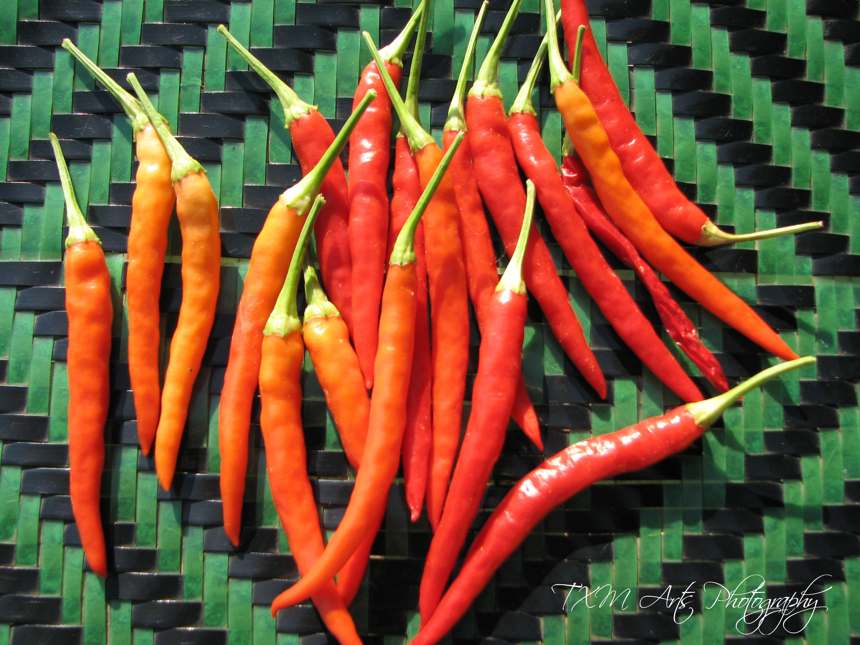 Hmong Spice Tgxc