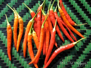 Hmong Chili Peppers_lrg